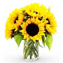 6 Pieces Seasonal Sunflower Vase