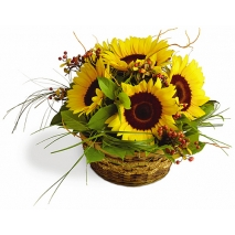 6 Pieces Sunflower in a Basket