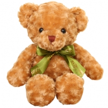 brown color medium size teddy to philippines