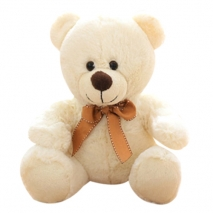 white color small size teddy bear to philippines