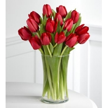 15 elegant red tulips in vase to philippines
